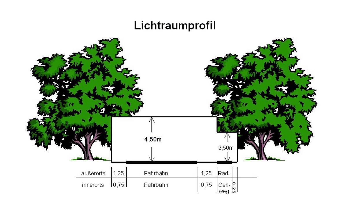 gemeinde bartholomä - bäume, sträucher und hecken an öffentlichen